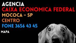 Aqui você encontra o contato completo da AGÊNCIA como: Localização, Telefone e endereço da Agencia CIDADE DE MOCOCA do CAIXA ECONOMICA FEDERAL na cidade de M...