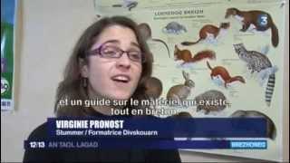 Staj micher : Bugaligoù ha brezhoneg - Stumdi - An taol lagad d'ar 25 a viz du 2014 France 3.