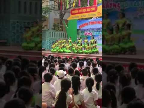 Trường TH Bãi Cháy-Hoạt động ngoại khóa Bảo vệ môi trường
