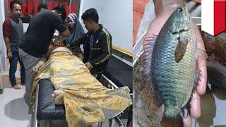 Video Ikan Betok masuk ke dalam tenggorokan pria saat memancing - TomoNews MP3, 3GP, MP4, WEBM, AVI, FLV Maret 2018