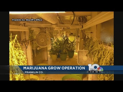 Franklin Co. investigation uncovers underground pot growing operation