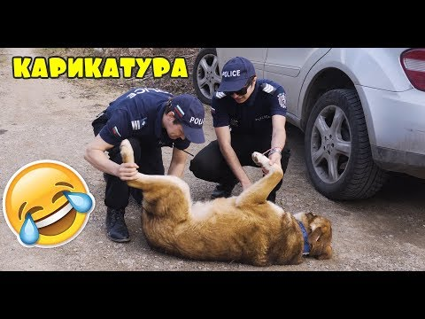 Funny movies - Карикатура - Двата члена