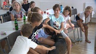 Náhled - Psí škola na příměstském táboře DDM Magnet Mohelnice
