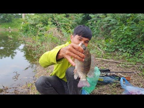 Đi tìm điểm câu cá sông mới nhất– Câu cá rô phi - Thời lượng: 22:45.