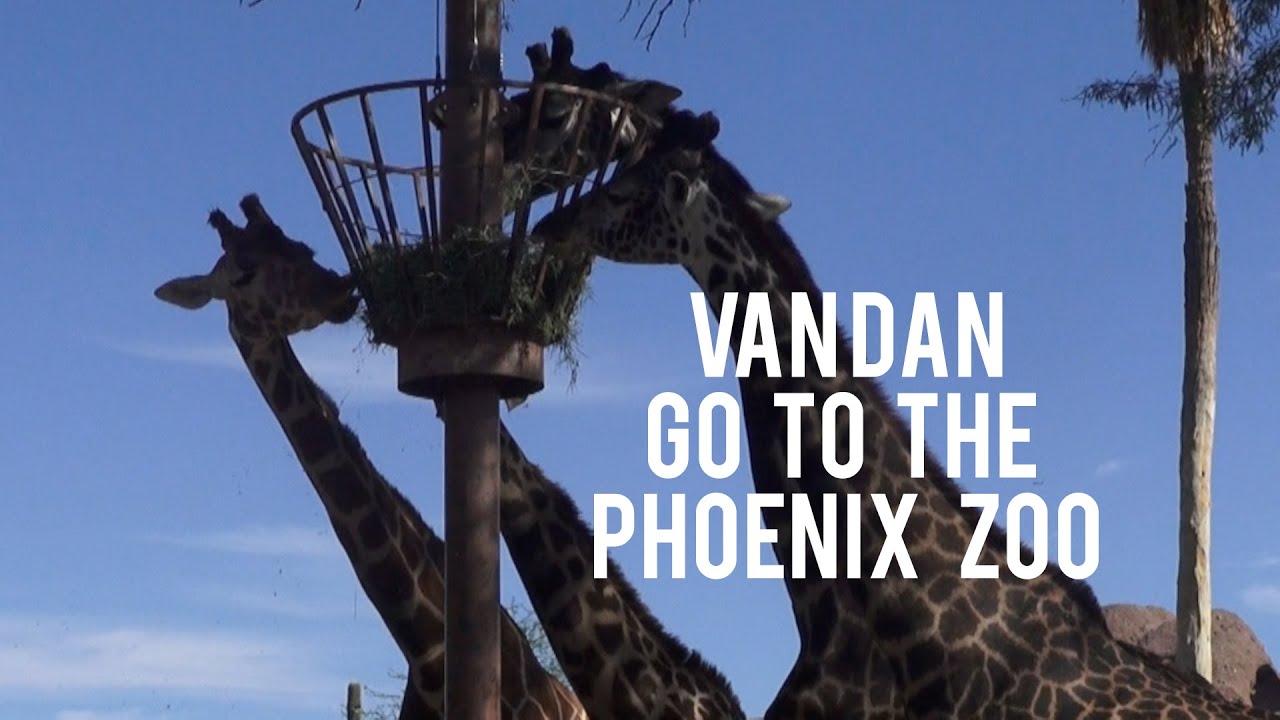 Vlogmas Day 2: VanDan Goes to the Phoenix Zoo