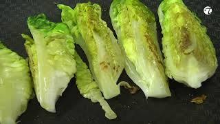 Pochierter Zander an gebratenen Salatherzen, Paprika Kompott und Zitrusfrüchten