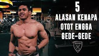 Video 5 ALASAN KENAPA OTOT ENGGA GEDE-GEDE MP3, 3GP, MP4, WEBM, AVI, FLV Desember 2018