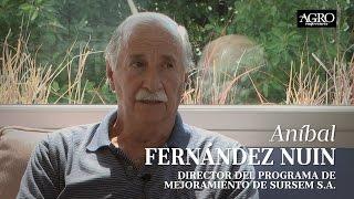 Aníbal Fernández Nuin - Director del Programa de Mejoramiento de Sursem S.A.
