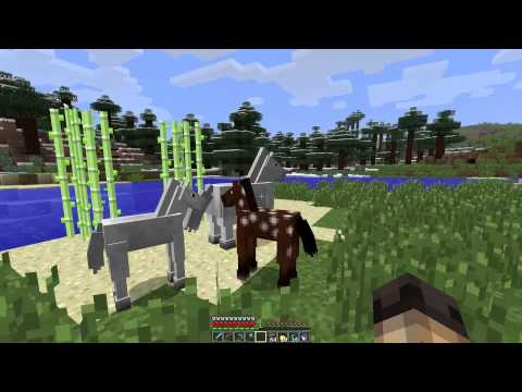 Beans Plays Minecraft S1E16: Finding and taming Horses