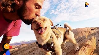Fearless Rescue Dog Jumps Off Cliffs With His Dad | The Dodo by The Dodo