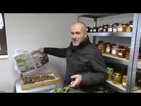 Gartenrundgang Dezember / Ernte für das Mittagessen (видео)
