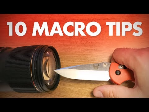 My 10 Best Macro Photography Tips For Beginners