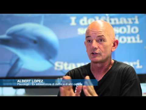 Intervista a Albert Lopez, ex-addestratore di delfini