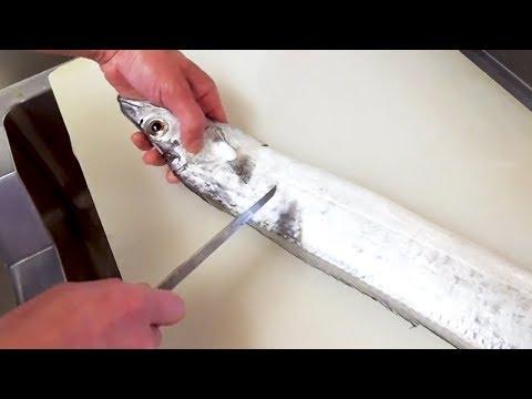 The longest BELT FISH! Pan-fried and Sashimi - Japanese Street Food - Thời lượng: 17 phút.