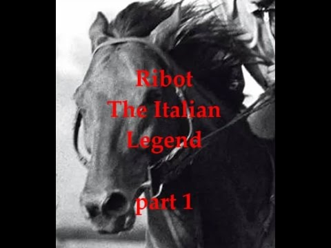 RIBOT 1 : The birth of a Champion