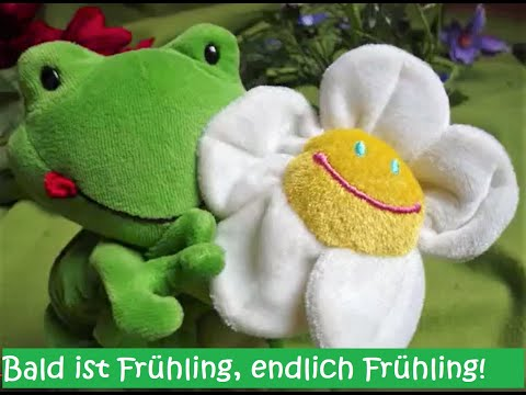 Tijo Kinderbuch - Das Tijo Frühlingslied
