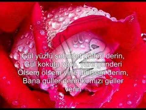 Mustafa Demirci – Güllere Vurgunum Sözleri