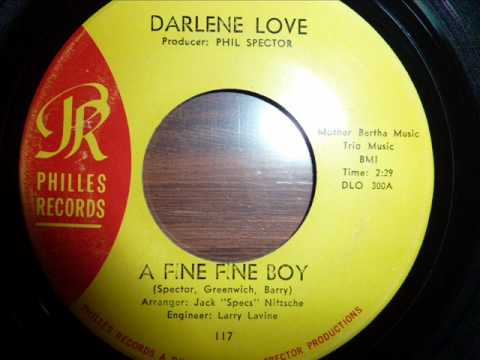 Tekst piosenki Darlene Love - A Fine, Fine Boy po polsku