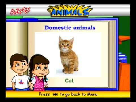 Domestic Animals for Nursery Kids