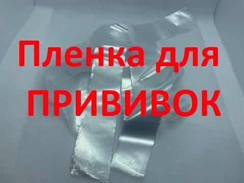 Пленка для прививки продажа.