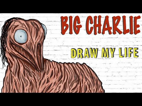 Big Charlie : Draw My Life