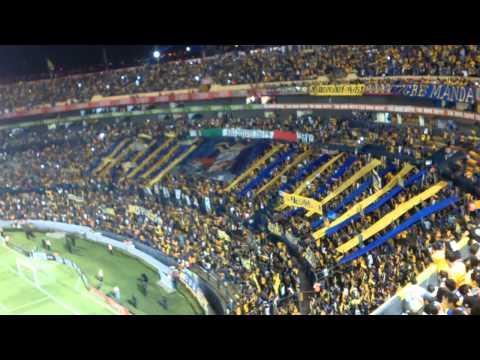 Recibimiento De Tigres La Copa Libertadores - Libres y Lokos - Tigres