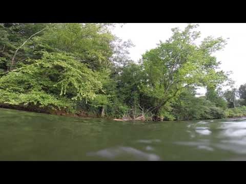 SPEAR FISHING FOR CATFISH BOYDS MILL POND SC