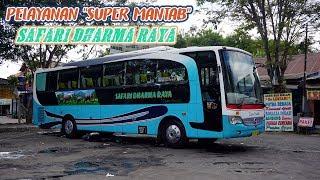 """Video NAIK BUS INI BISA DIANTAR SAMPAI DEPAN RUMAH! PELAYANAN """"SUPER TOP"""". Trip by OBL Jogja - Jakarta MP3, 3GP, MP4, WEBM, AVI, FLV Januari 2019"""