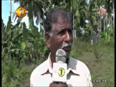 Shakthi TV Sri Lanka Lunch time news 5th March 2015