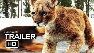 A Dog S Way Home Official Trailer  2  2019  Adventure Movie Hd