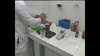découvez une activité juteuse à Taref : la transformation de la tomate industrielle