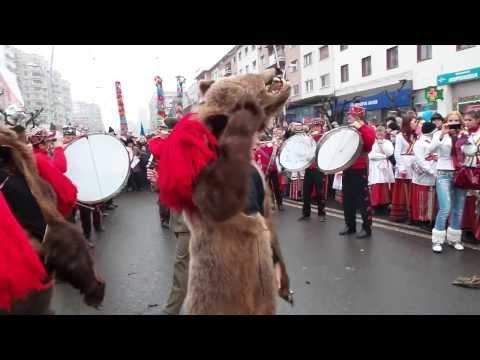 Ursul de la Dofteana Bacau 2013