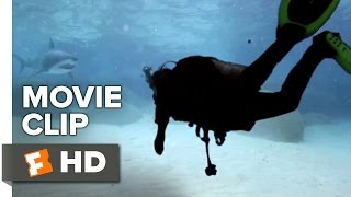 Nonton Shark Lake Movie Clip   Attack  2015    Dolph Lundgren Shark Thriller Hd Film Subtitle Indonesia Streaming Movie Download