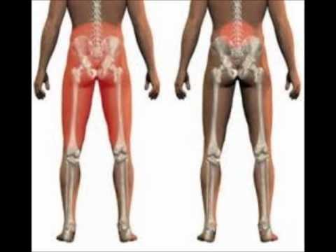 nervio ciático - Dolor en el nervio ciatico FB: https://www.facebook.com/farmacialasaludable?ref=hl COMPRA NUESTROS PRODUCTOS AQUI: https://squareup.com/market/la-saludable.