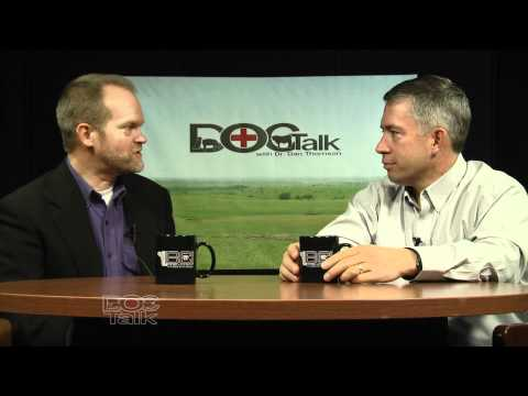 DocTalk: Breeding soundness exams in bulls