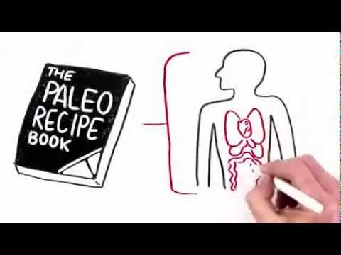 Paleo Diet Recipes – How To Lose Weight Fast