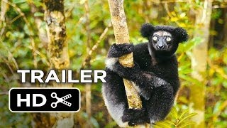 Nonton Island of Lemurs: Madagascar Official Trailer #1 (2014) - Nature Documentary HD Film Subtitle Indonesia Streaming Movie Download