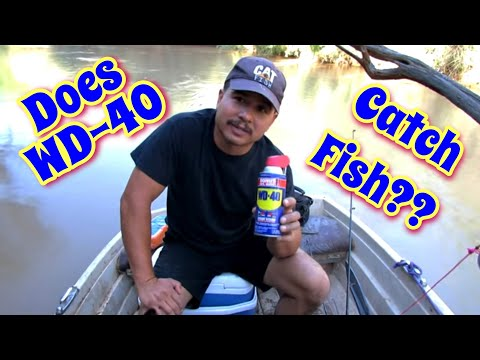 how to make fish attractant