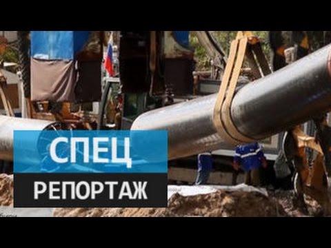 Сила Сибири. Специальный репортаж Полины Крикун (видео)
