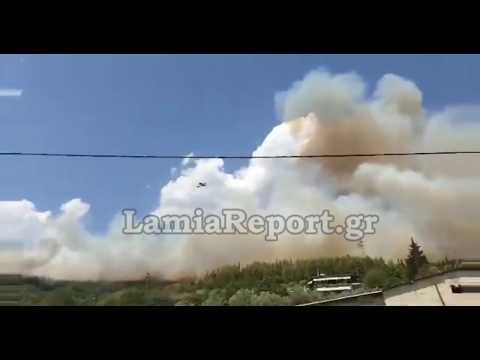 Μαίνεται η μεγάλη πυρκαγιά στη Φθιώτιδα – Στο «παρά πέντε» γλίτωσαν δύο χωριά (Video)