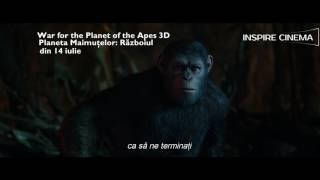 O națiune de primate extrem de evoluate genetic, condusă de Caesar, intră într-un amplu conflict armat cu oamenii.