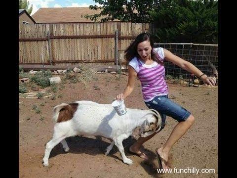 girl killing goat
