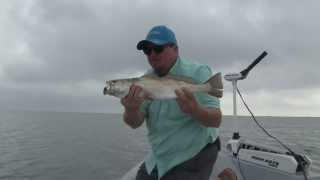 Skinny Water Speckled Trout
