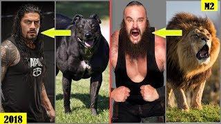 20 WWE WRESTLERS Who Look Alike ANIMALS - Roman Reigns, The Rock, Braun Strowman.. [HD]