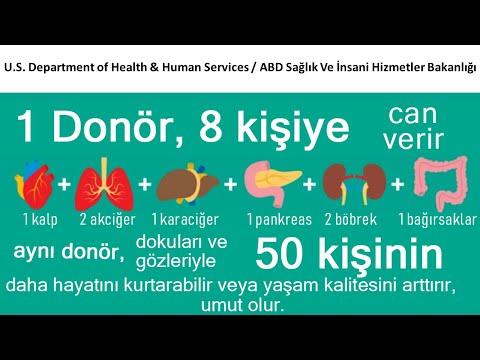 Organ Bağışında Belçika Modeli - 2018.08.30