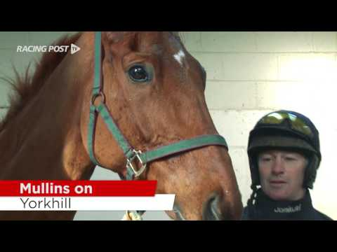 Cheltenham Stable Tour: Willie Mullins On His Chasers