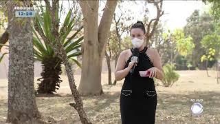 Ocorrências de incêndio em Botucatu e Ibitinga