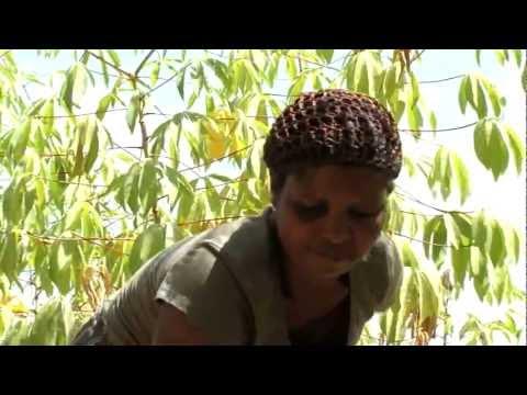 Joyce Meena's story - Cassava Village Processing in Tanzania
