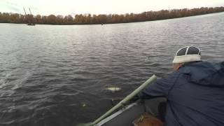 ловля судака на яме видео