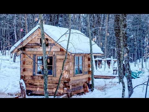 Building an Off-grid Workshop | Felling Trees for the Off Grid Log Cabin Build